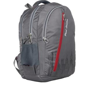 Paul London Pixel 35 L Backpack  (Grey)