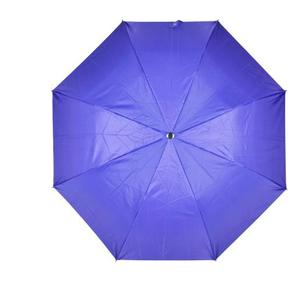 Fendo 2 Fold Auto Open Umbrella  (Violet)