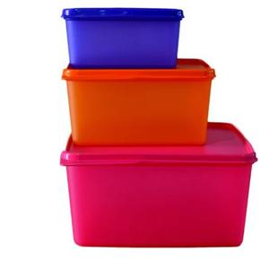 Tupperware Keep Tab (Set of 3) - 500 ml, 2500 ml, 1200 ml Plastic Grocery Container  (Pack of 3, Multicolor)
