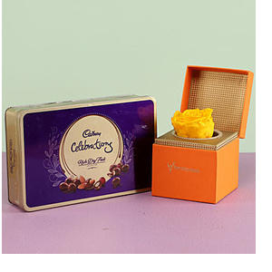 Yellow Forever Rose & Cadbury Dry Fruit Collection