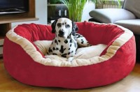 R.K Products 28 red with cream patti L Pet Bed(Red)